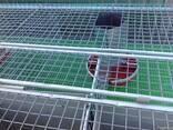 Пластиковая кормушка для кроликов или птицы - фото 2