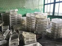 Пластиковые пищевые ящики.