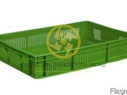 Пластиковые ящики под зелень, ягоды