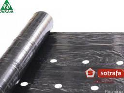 Пленка мульчирующая перфорированная Sotrafa 30 мкм 1, 2х1000
