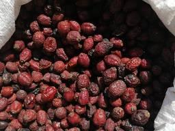 Плоды шиповника (сушилка)