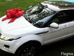 Подарочный бантик на машину, упаковка авто бантом