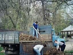 Вывоз веток Спил деревьев. Корчевание пней Киев