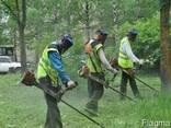 Покос травы. Косим траву. Уборка участко. выкорчуем деревья. - фото 2