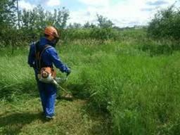 Покос травы, скосить траву, расчистка участка