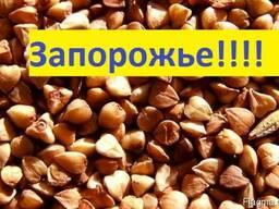 Куплю Гречку Запорожье Украина