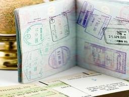 Польская, Чешская виза. Страховка. Загранпаспорт