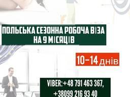 Польская рабочая виза на 9 месяцев.