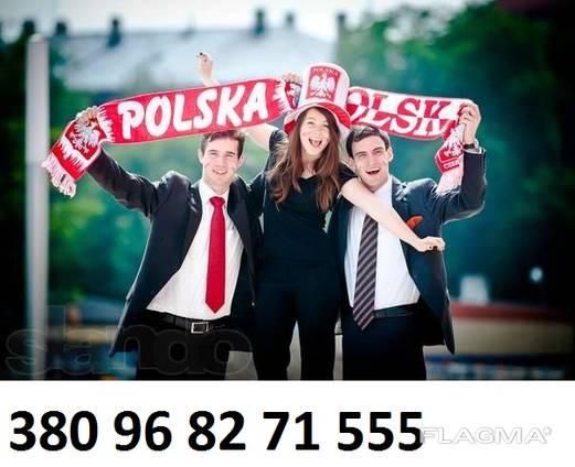 Польская Рабочая виза. Страховка