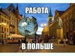 Помощь в оформление документов и трудоустройству в Польше