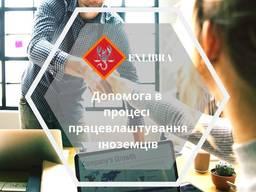 Помощь в трудоустройстве иностранцев в Польше