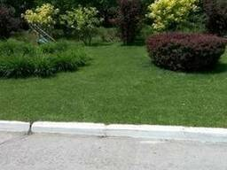 Посев газонной травы. Уход за садом. Ремонт газона.
