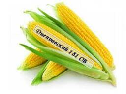 Посевной материал кукуруза