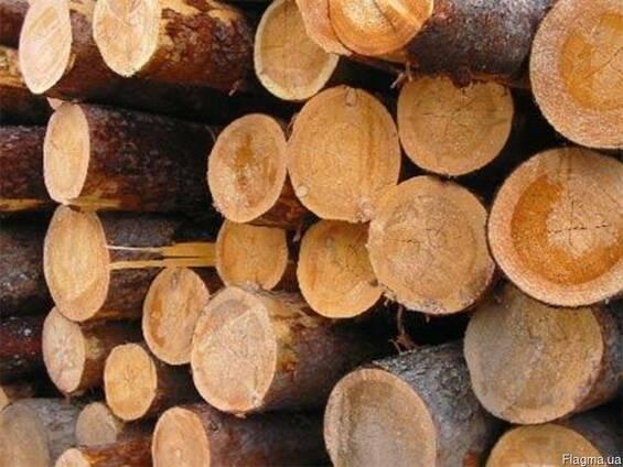 Постоянно покупаю лес круглый, лиственных пород.