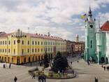 Посуточная аренда 2-х комнатной квартиры в центре Мукачева - фото 8
