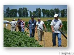 Практическое аграрное образование