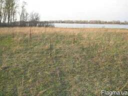 Предлагается к продаже земельный участок 118 соток на Днепре - фото 2