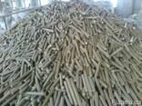 Пресс для брикетирования отходов деревообрабатывающей промыш - фото 5