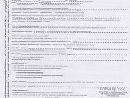Приглашение на польскую рабочую визу (6 мес. )