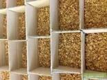 Принимаем заказы на оптовые поставки ядра ореха грецкого - фото 2