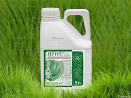 Приус гербицид на зерновые колосовые культуры и кукурузу