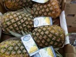 Продаем ананасы (Коста-Рика, Колумбия) оптом, мелким оптом