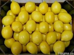Продаем лимоны оптом