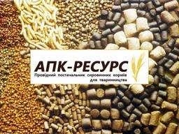 Продаем Отруби пшеничные, муку, кукурузу