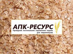 Продаем отруби пшеничные: пушистые и гранулир. (Wheat bran)