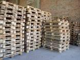Продаем поддоны в Чернигове 1200-800 1200-1000 - фото 1