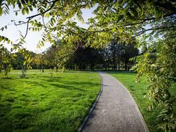 Продаємо травосуміш для благоустрою парків і міських територій