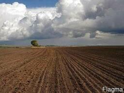 Продам 2 фермерских хозяйства, агропредприятие Бердичев