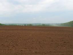 Продам агрофирму в Черниговской области