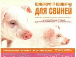 Продам БВМД для поросят свиней ТМ Калинка