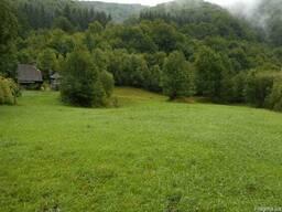Продам дом-участок в Закарпатской области.