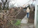Продам дом в Крыму. - фото 5