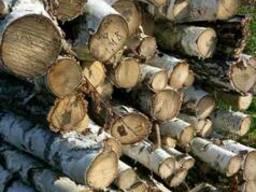 Продам дрова Береза 1-м, 2-м