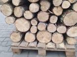 Продам дрова береза, продам дрова берёза, кругляк - фото 2
