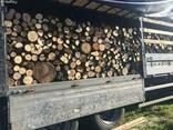 Продам дрова дубовые длина 1метер - фото 1