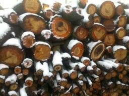 Продам дрова фруктовых пород