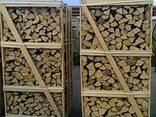 Продам дрова колоті на експорт (граб, ясен, дуб, береза) - фото 1