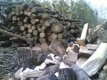 Куплю дрова оптом и в розницу метровку и колотые - photo 2