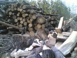Продам дрова метровку и