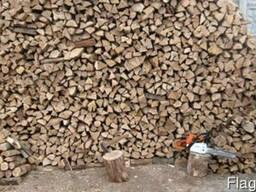 Продам дрова разного твердого дерева в Днепропетровске возмо