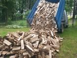 Продам дрова твердых порд - фото 1
