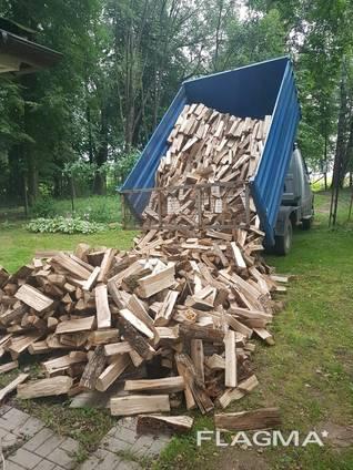 Продам дрова твердых порд