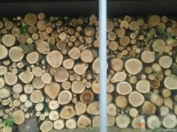 Продам дрова твердых пород