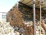 Продам дубовые дрова на экспорт FCA - фото 3