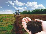 Продам фермерское хозяйство. - фото 2