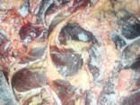 Продам головизну говяжью, диафрагму - фото 1